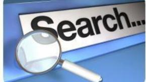 Site Search report